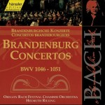 Brandenburg concerts Classical Music Fall 2017