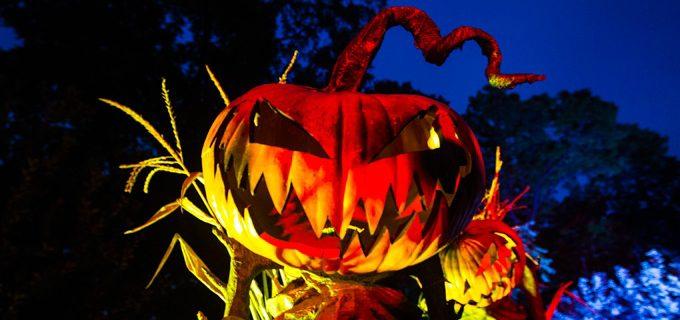 where to celebrate halloween 2016 - Where To Celebrate Halloween