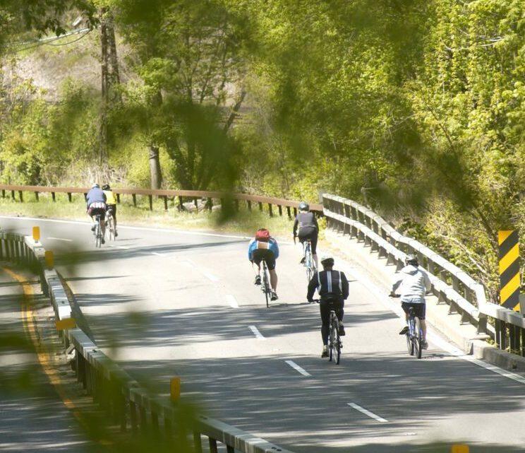Bicycle Sundays Bronx River Parkway