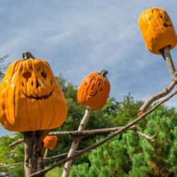 Halloween_NYBG_Scarecrows & PUmpkins 2