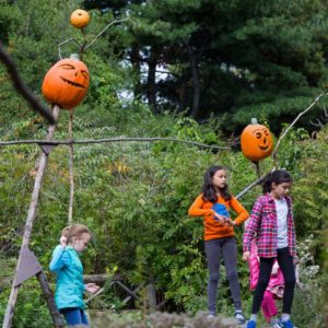 halloween_nybg_scarecrows pumpkins where to celebrate halloween 2017 - Where To Celebrate Halloween